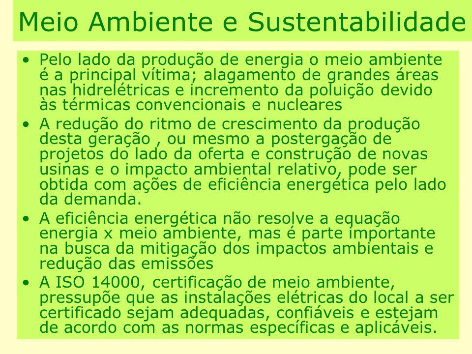 Meio Ambiente e Sustentabilidade Pelo lado da produção de energia o meio ambiente é a principal vítima; alagamento de grandes áreas nas hidrelétricas