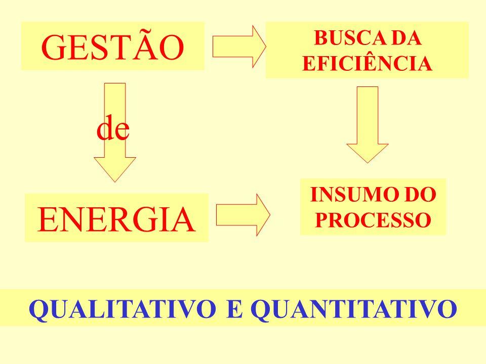 de GESTÃO ENERGIA INSUMO DO PROCESSO BUSCA DA EFICIÊNCIA QUALITATIVO E QUANTITATIVO