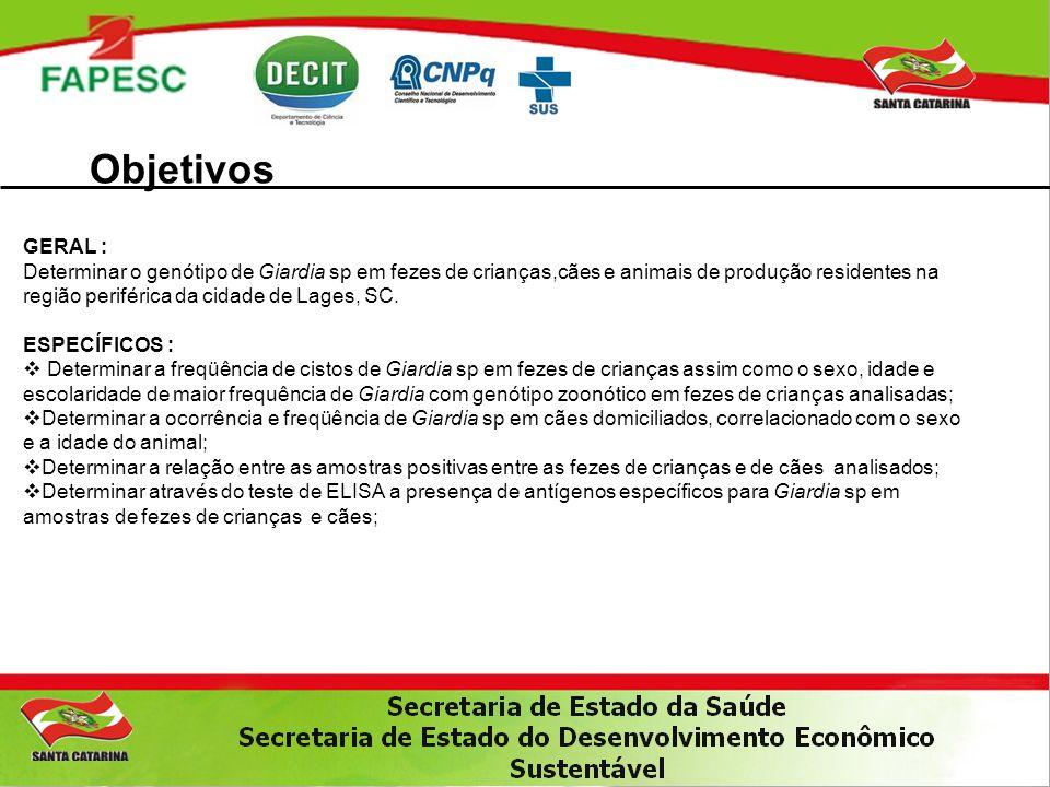 Objetivos GERAL : Determinar o genótipo de Giardia sp em fezes de crianças,cães e animais de produção residentes na região periférica da cidade de Lag