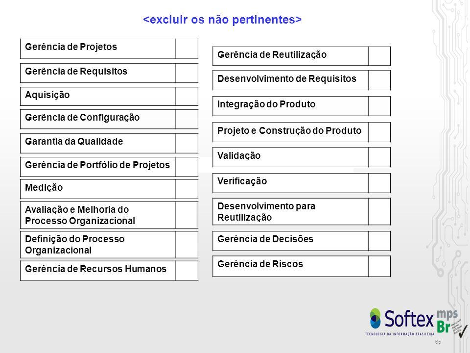 65 Gerência de Projetos Gerência de Requisitos Gerência de Configuração Medição Aquisição Gerência de Recursos Humanos Definição do Processo Organizacional Avaliação e Melhoria do Processo Organizacional Gerência de Reutilização Desenvolvimento para Reutilização Integração do Produto Verificação Validação Gerência de Riscos Gerência de Decisões Desenvolvimento de Requisitos Projeto e Construção do Produto Garantia da Qualidade Gerência de Portfólio de Projetos