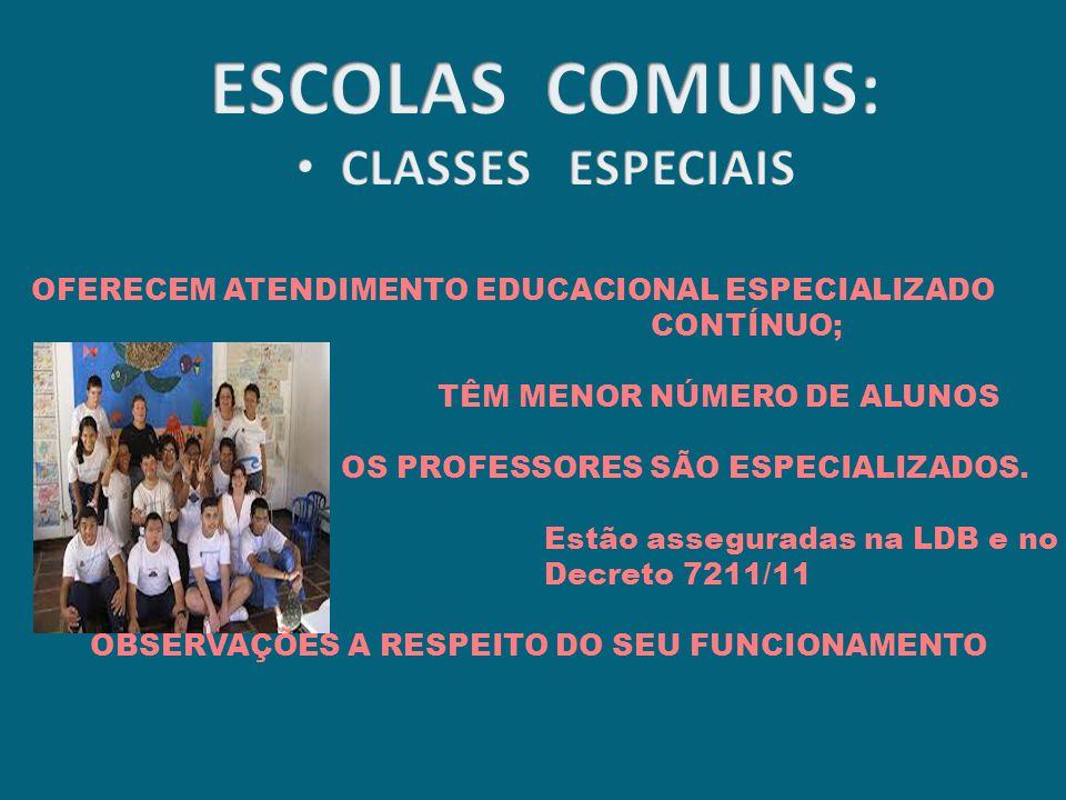 OFERECEM ATENDIMENTO EDUCACIONAL ESPECIALIZADO CONTÍNUO; TÊM MENOR NÚMERO DE ALUNOS OS PROFESSORES SÃO ESPECIALIZADOS.