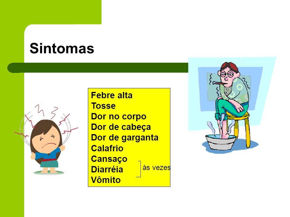 Febre alta Tosse Dor no corpo Dor de cabeça Dor de garganta Calafrio Cansaço Diarréia Vômito às vezes Sintomas