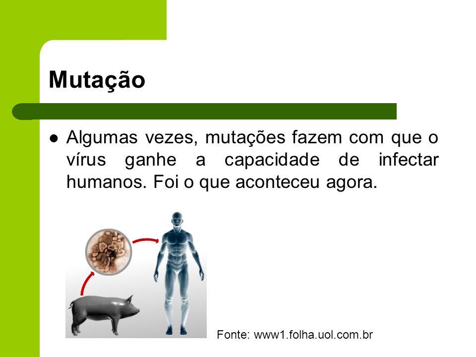 Mutação Algumas vezes, mutações fazem com que o vírus ganhe a capacidade de infectar humanos. Foi o que aconteceu agora. Fonte: www1.folha.uol.com.br