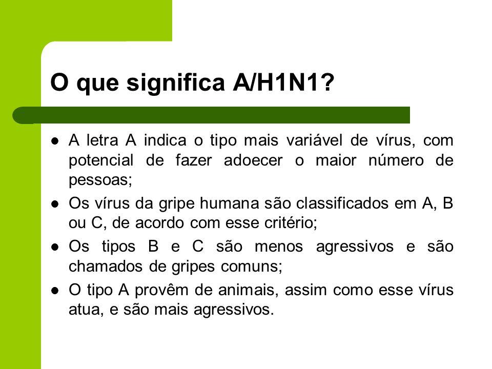 O que significa A/H1N1? A letra A indica o tipo mais variável de vírus, com potencial de fazer adoecer o maior número de pessoas; Os vírus da gripe hu