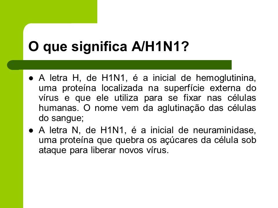 O que significa A/H1N1? A letra H, de H1N1, é a inicial de hemoglutinina, uma proteína localizada na superfície externa do vírus e que ele utiliza par