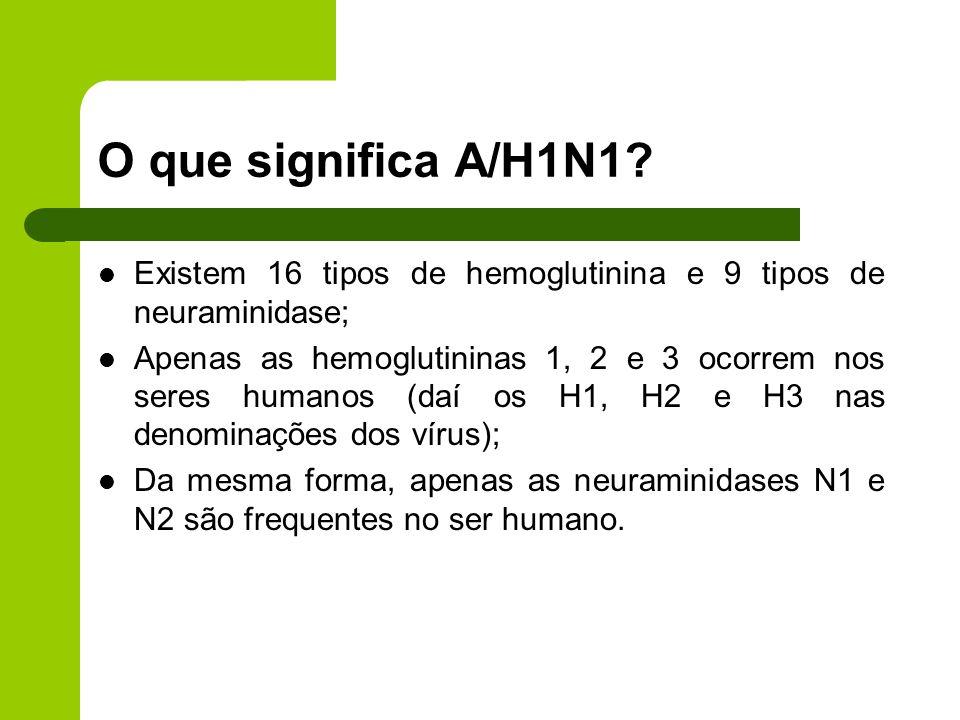 O que significa A/H1N1? Existem 16 tipos de hemoglutinina e 9 tipos de neuraminidase; Apenas as hemoglutininas 1, 2 e 3 ocorrem nos seres humanos (daí