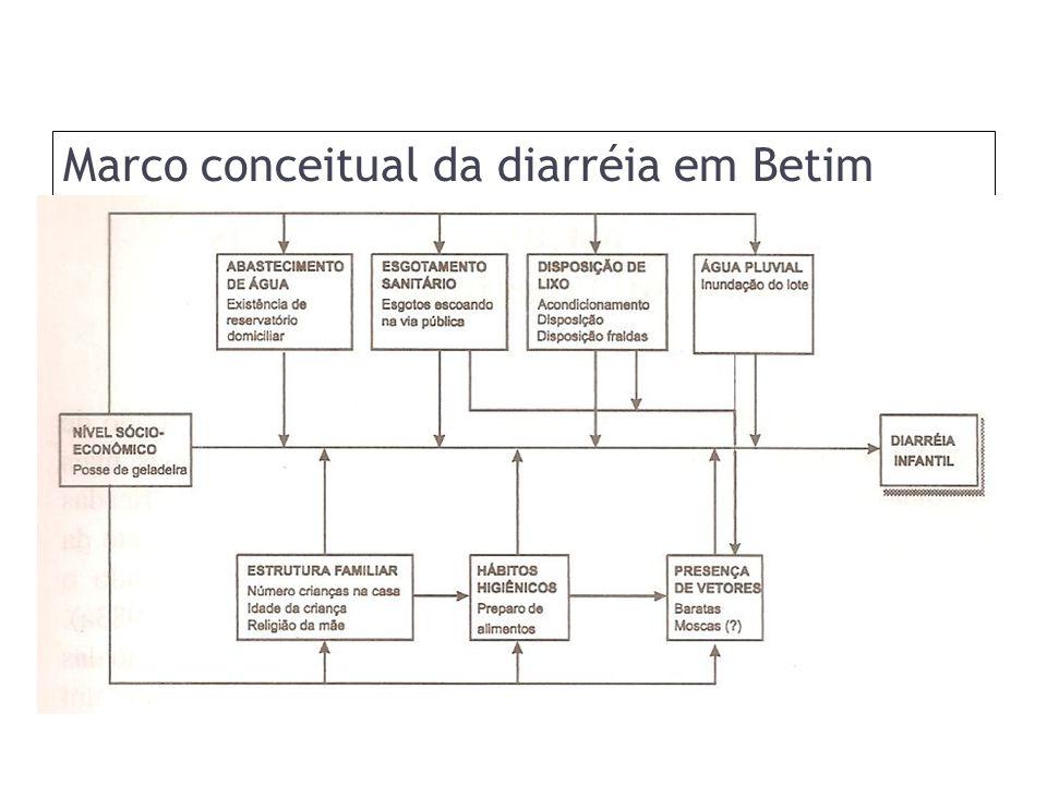 Marco conceitual da diarréia em Betim (MG)