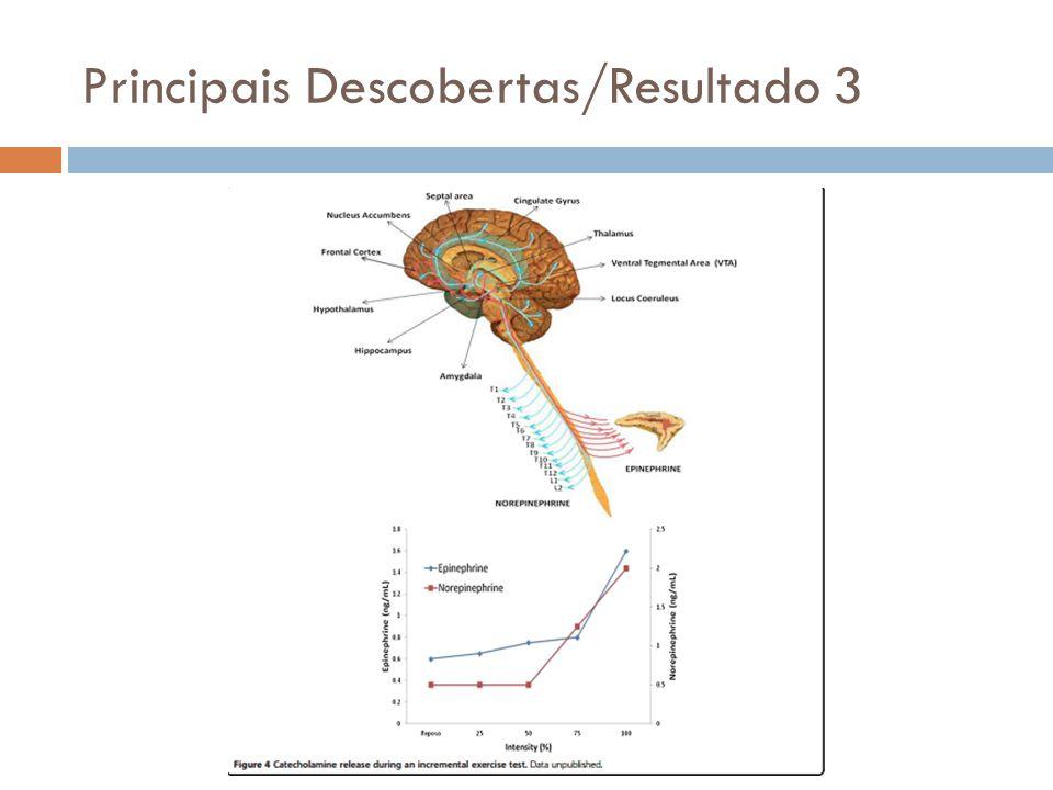 Principais Descobertas/Resultado 3