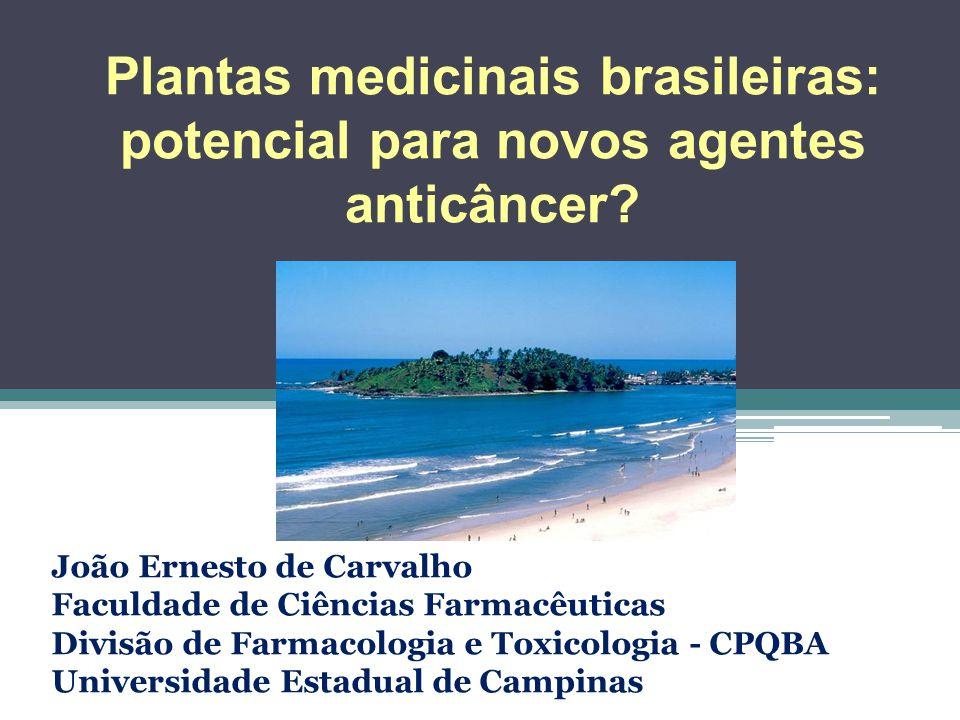 Plantas medicinais brasileiras: potencial para novos agentes anticâncer? João Ernesto de Carvalho Faculdade de Ciências Farmacêuticas Divisão de Farma