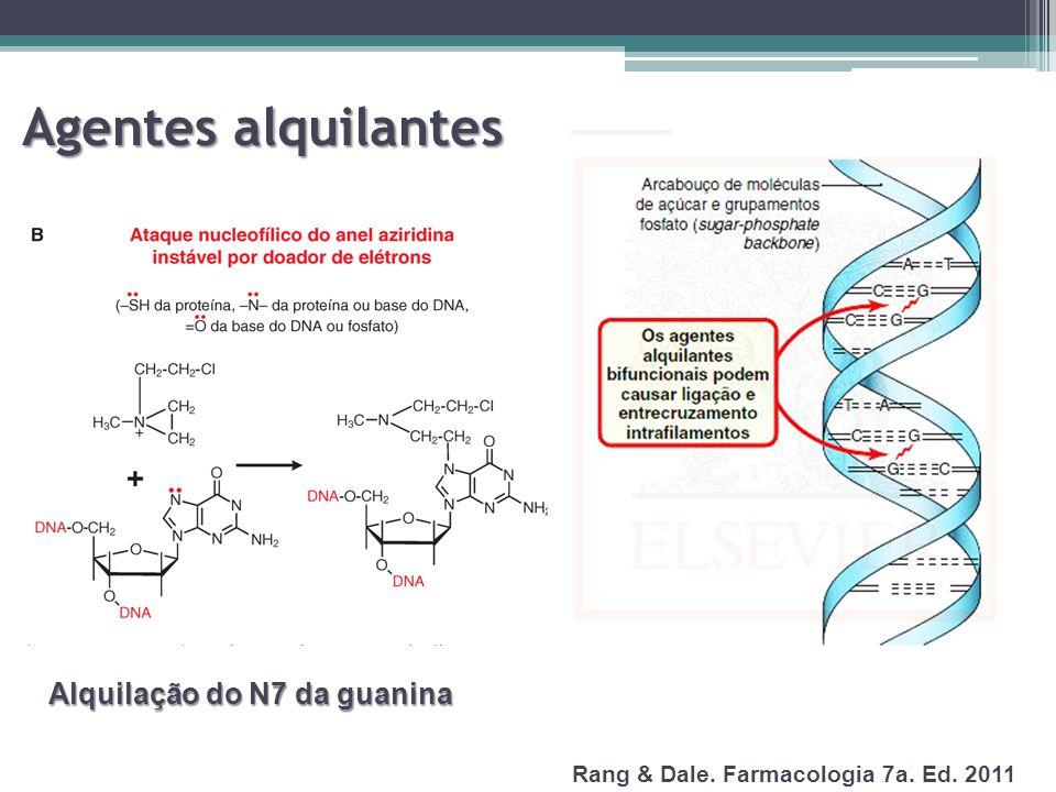 Agentes alquilantes Alquilação do N7 da guanina Rang & Dale. Farmacologia 7a. Ed. 2011