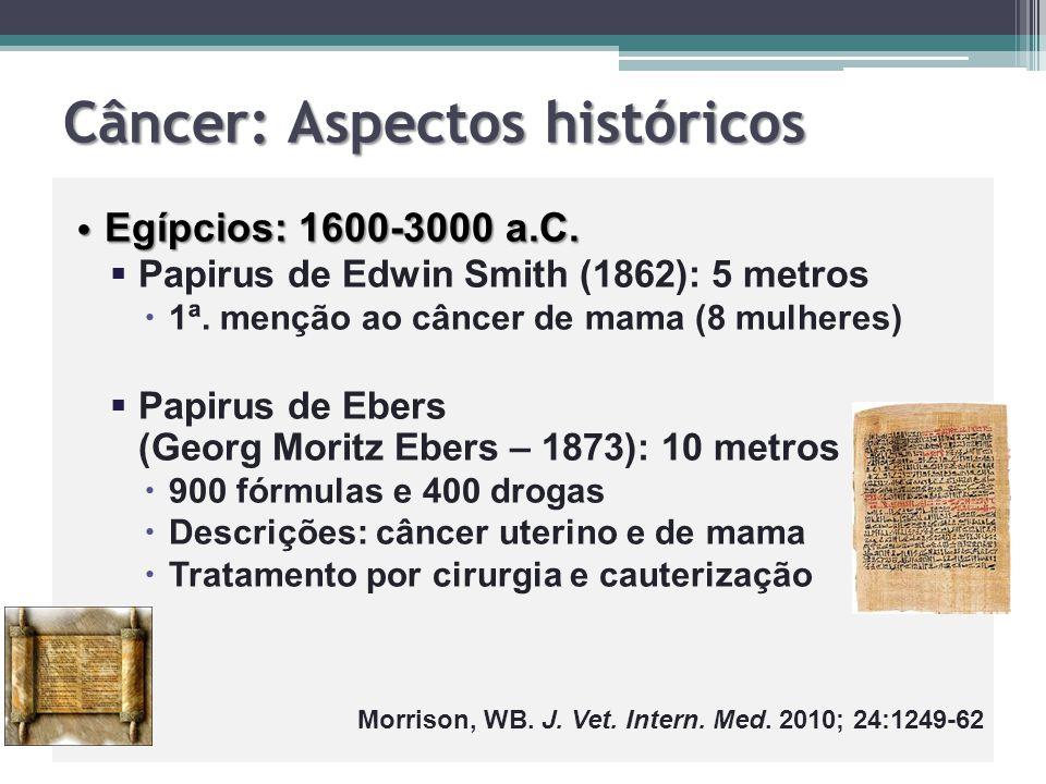 Câncer: Aspectos históricos Egípcios: 1600-3000 a.C. Egípcios: 1600-3000 a.C.   Papirus de Edwin Smith (1862): 5 metros   1ª. menção ao câncer de