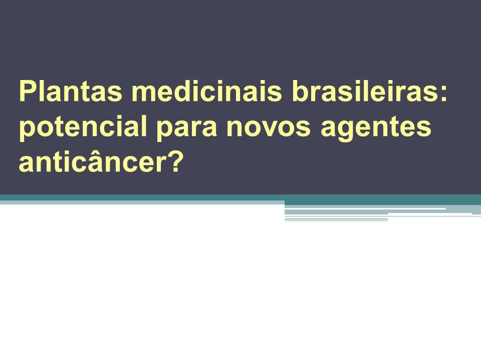 Plantas medicinais brasileiras: potencial para novos agentes anticâncer?