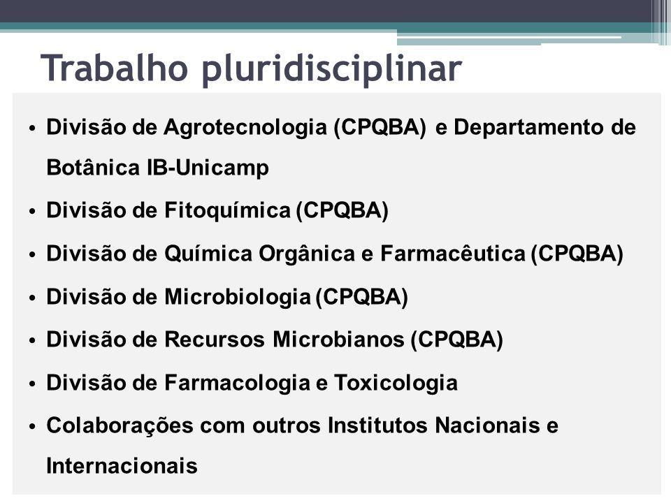 Trabalho pluridisciplinar Divisão de Agrotecnologia (CPQBA) e Departamento de Botânica IB-Unicamp Divisão de Fitoquímica (CPQBA) Divisão de Química Or