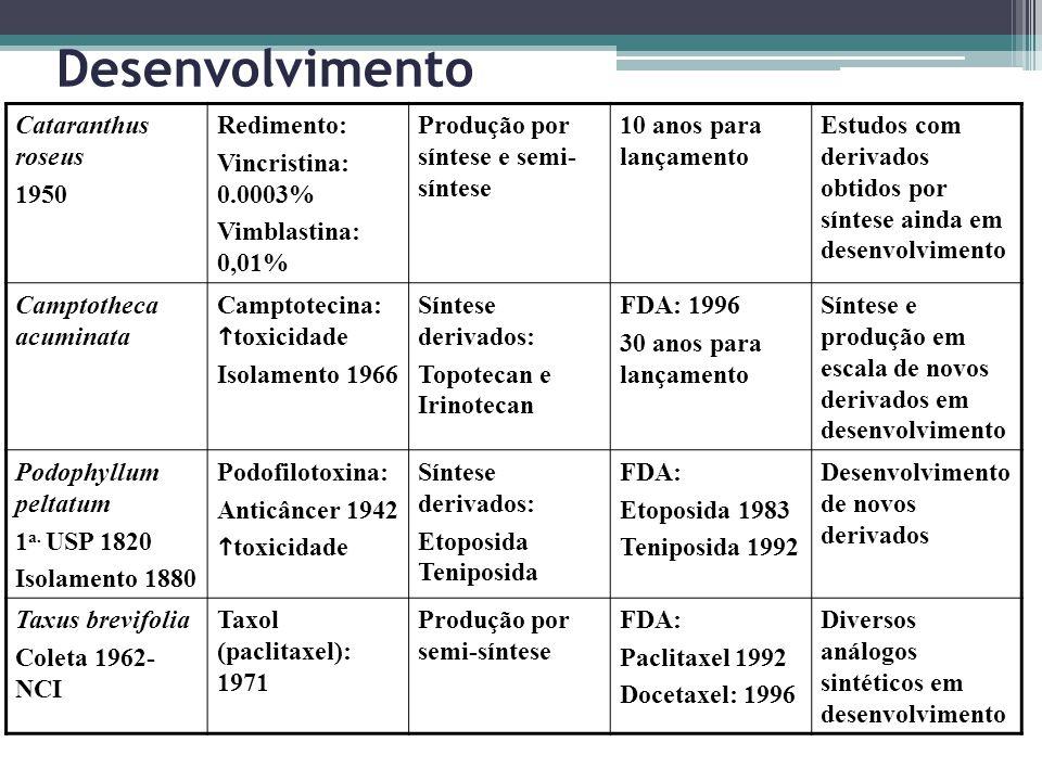 Desenvolvimento Cataranthus roseus 1950 Redimento: Vincristina: 0.0003% Vimblastina: 0,01% Produção por síntese e semi- síntese 10 anos para lançament