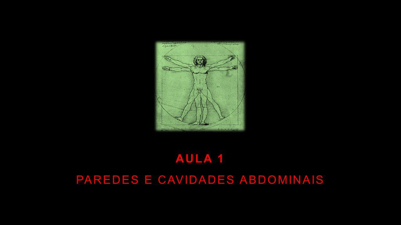 AULA 1 PAREDES E CAVIDADES ABDOMINAIS