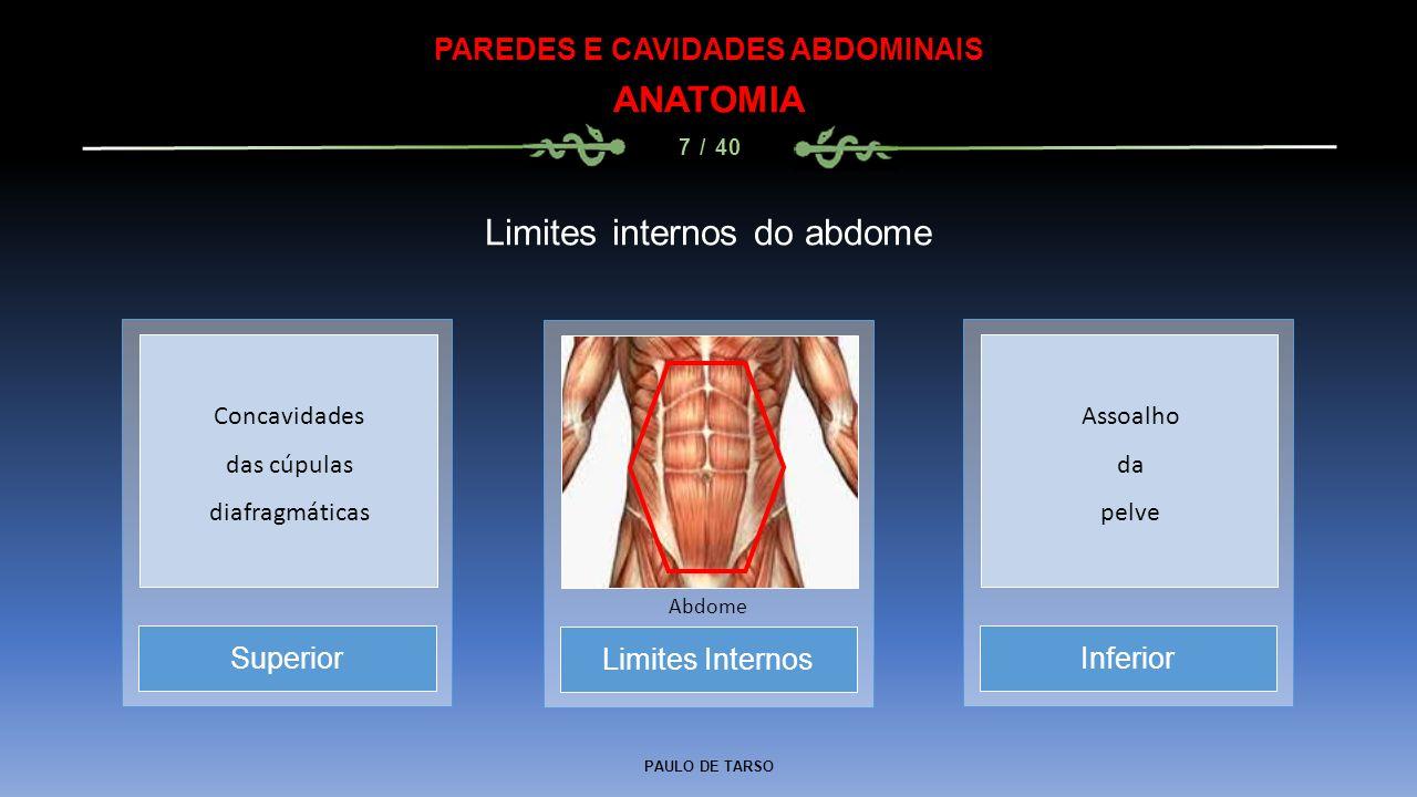 PAULO DE TARSO PAREDES E CAVIDADES ABDOMINAIS ANATOMIA 7 / 40 Limites internos do abdome Limites Internos Abdome SuperiorInferior Concavidades das cúpulas diafragmáticas Assoalho da pelve