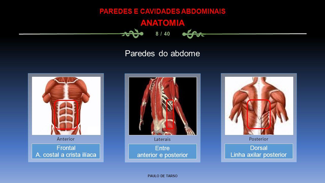 PAULO DE TARSO PAREDES E CAVIDADES ABDOMINAIS ANATOMIA 8 / 40 Paredes do abdome Entre anterior e posterior Laterais Frontal A.