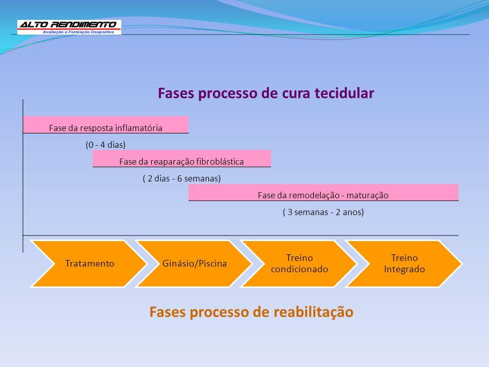 Fase da resposta inflamatória (0 - 4 dias) Fase da reaparação fibroblástica ( 2 dias - 6 semanas) Fase da remodelação - maturação ( 3 semanas - 2 anos