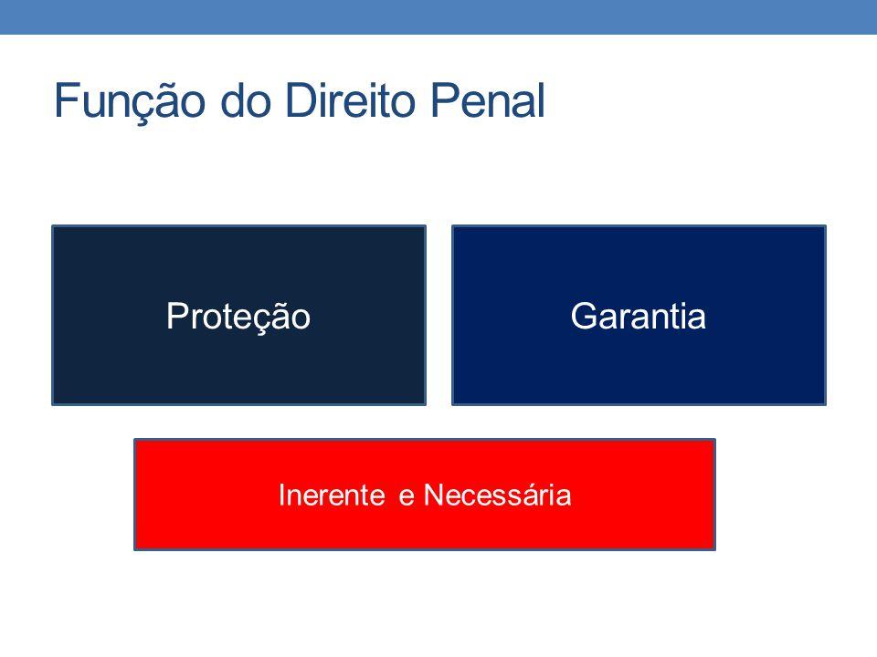 Função do Direito Penal ProteçãoGarantia Inerente e Necessária