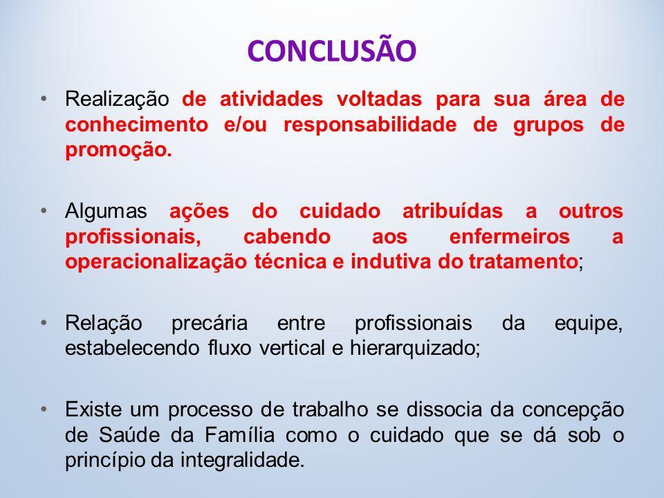 CONCLUSÃO Realização de atividades voltadas para sua área de conhecimento e/ou responsabilidade de grupos de promoção.