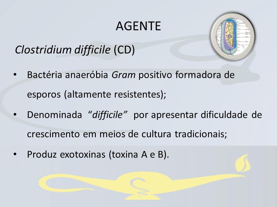 """Bactéria anaeróbia Gram positivo formadora de esporos (altamente resistentes); Denominada """"difficile"""" por apresentar dificuldade de crescimento em mei"""