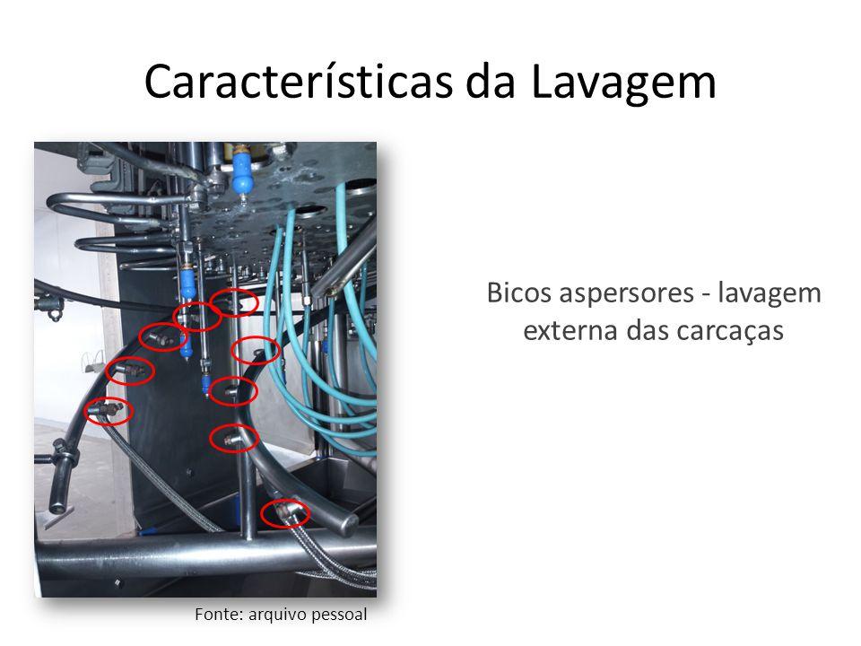 Características da Lavagem Bicos aspersores - lavagem externa das carcaças Fonte: arquivo pessoal