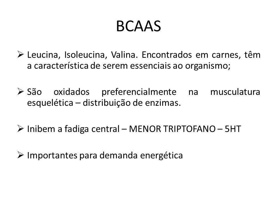 BCAAS  Leucina, Isoleucina, Valina. Encontrados em carnes, têm a característica de serem essenciais ao organismo;  São oxidados preferencialmente na