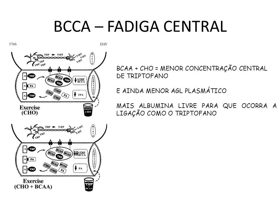 BCCA – FADIGA CENTRAL BCAA + CHO = MENOR CONCENTRAÇÃO CENTRAL DE TRIPTOFANO E AINDA MENOR AGL PLASMÁTICO MAIS ALBUMINA LIVRE PARA QUE OCORRA A LIGAÇÃO