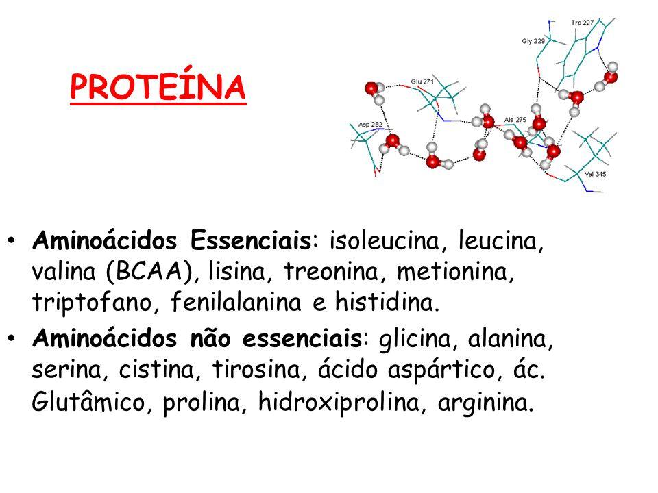 PROTEÍNA Aminoácidos Essenciais: isoleucina, leucina, valina (BCAA), lisina, treonina, metionina, triptofano, fenilalanina e histidina. Aminoácidos nã