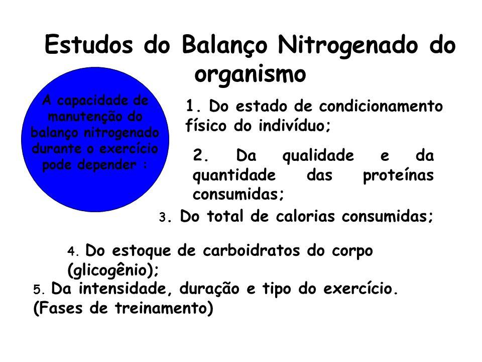 Estudos do Balanço Nitrogenado do organismo A capacidade de manutenção do balanço nitrogenado durante o exercício pode depender : 1. Do estado de cond