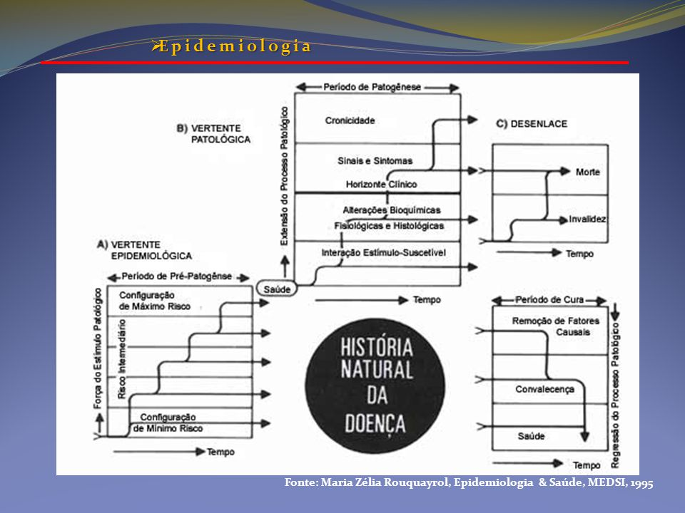 Fonte: Maria Zélia Rouquayrol, Epidemiologia & Saúde, MEDSI, 1995  Epidemiologia