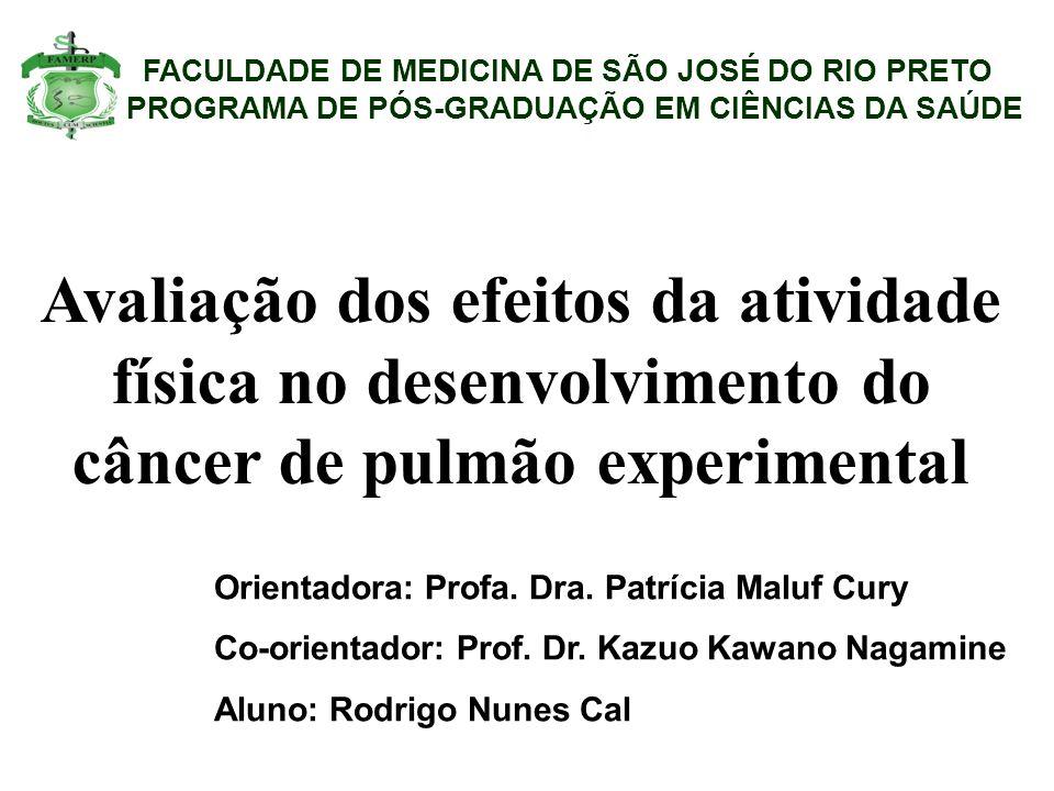 FACULDADE DE MEDICINA DE SÃO JOSÉ DO RIO PRETO PROGRAMA DE PÓS-GRADUAÇÃO EM CIÊNCIAS DA SAÚDE Avaliação dos efeitos da atividade física no desenvolvimento do câncer de pulmão experimental Orientadora: Profa.