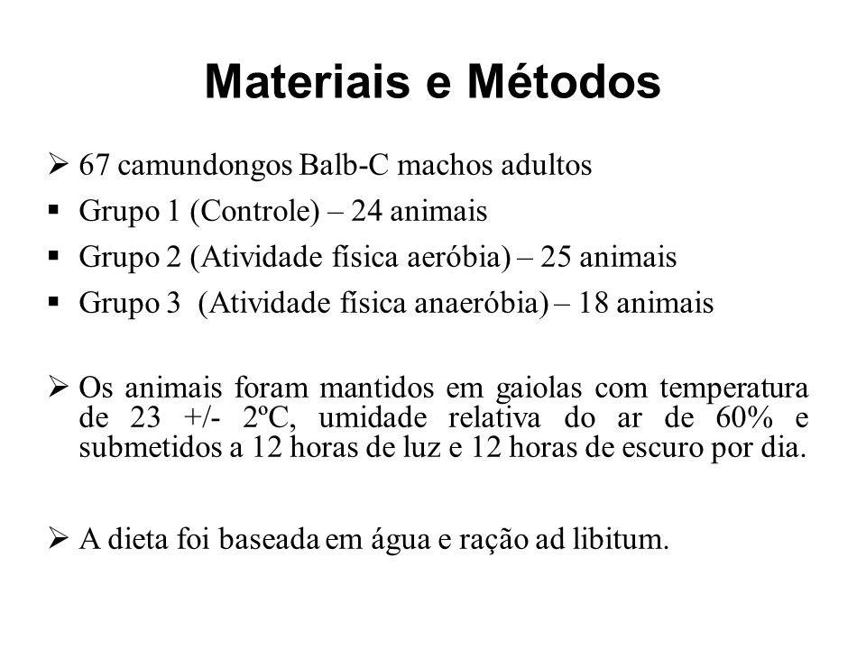 Materiais e Métodos  67 camundongos Balb-C machos adultos  Grupo 1 (Controle) – 24 animais  Grupo 2 (Atividade física aeróbia) – 25 animais  Grupo 3 (Atividade física anaeróbia) – 18 animais  Os animais foram mantidos em gaiolas com temperatura de 23 +/- 2ºC, umidade relativa do ar de 60% e submetidos a 12 horas de luz e 12 horas de escuro por dia.