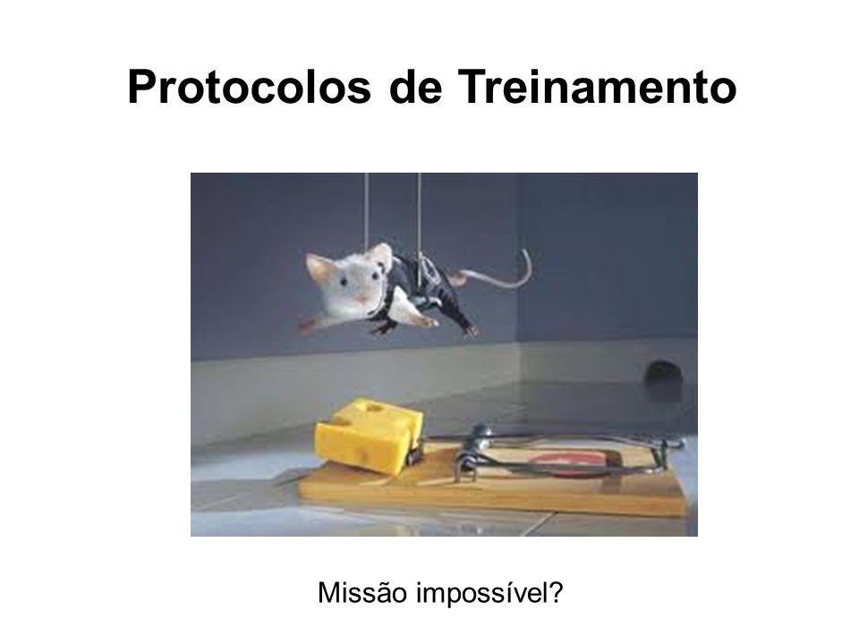 Protocolos de Treinamento Missão impossível?