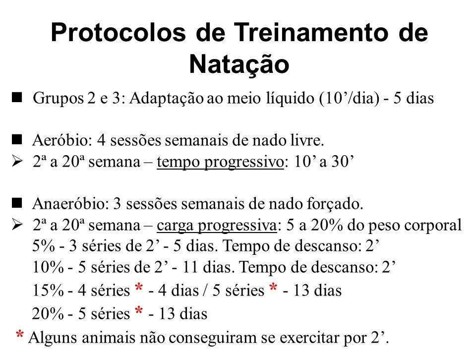 Protocolos de Treinamento de Natação Grupos 2 e 3: Adaptação ao meio líquido (10'/dia) - 5 dias Aeróbio: 4 sessões semanais de nado livre.