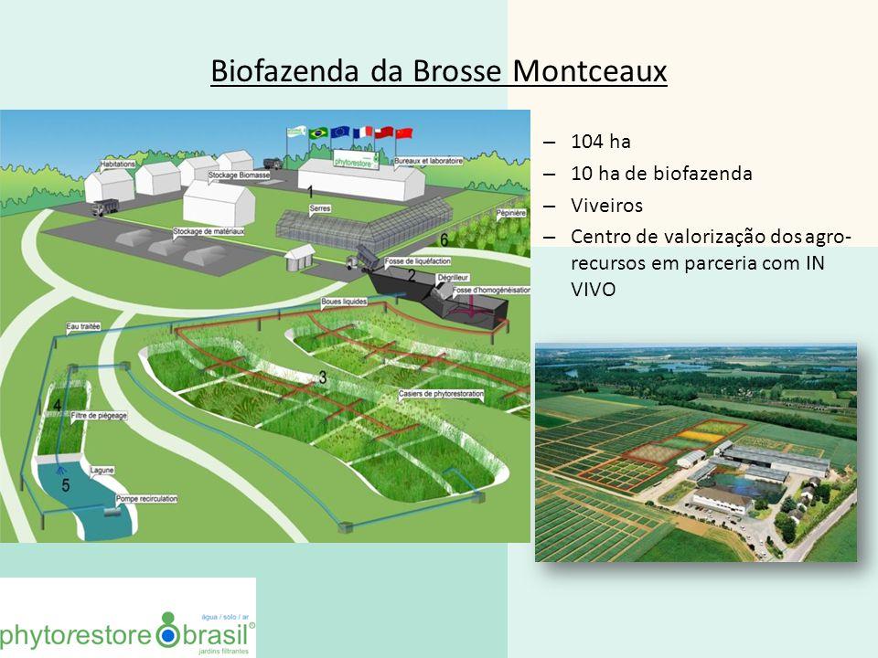 Biofazenda da Brosse Montceaux – 104 ha – 10 ha de biofazenda – Viveiros – Centro de valorização dos agro- recursos em parceria com IN VIVO 10