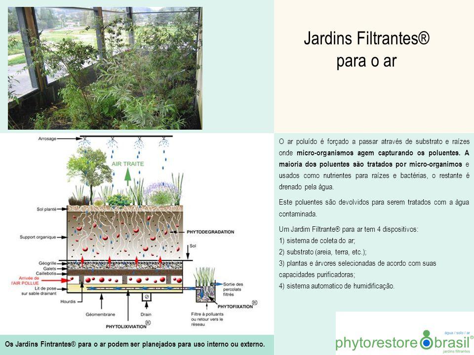 Jardins Filtrantes® para o ar O ar poluído é forçado a passar através de substrato e raízes onde micro-organismos agem capturando os poluentes. A maio