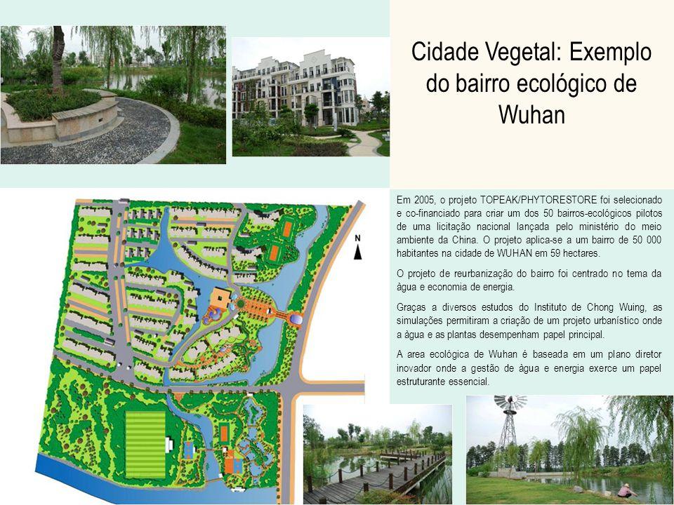 Cidade Vegetal: Exemplo do bairro ecológico de Wuhan Em 2005, o projeto TOPEAK/PHYTORESTORE foi selecionado e co-financiado para criar um dos 50 bairr