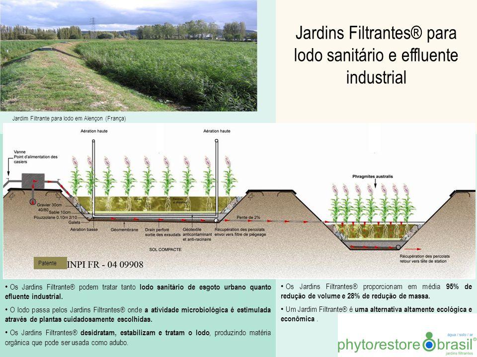 Jardins Filtrantes® para lodo sanitário e effluente industrial Os Jardins Filtrante® podem tratar tanto lodo sanitário de esgoto urbano quanto efluent