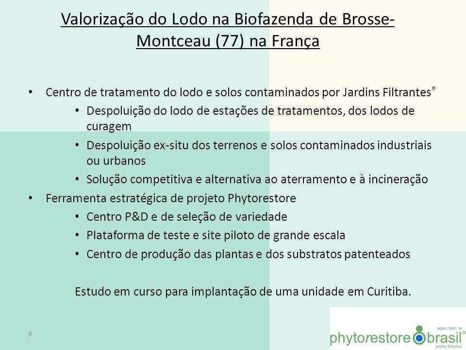 Valorização do Lodo na Biofazenda de Brosse- Montceau (77) na França Centro de tratamento do lodo e solos contaminados por Jardins Filtrantes ® Despol