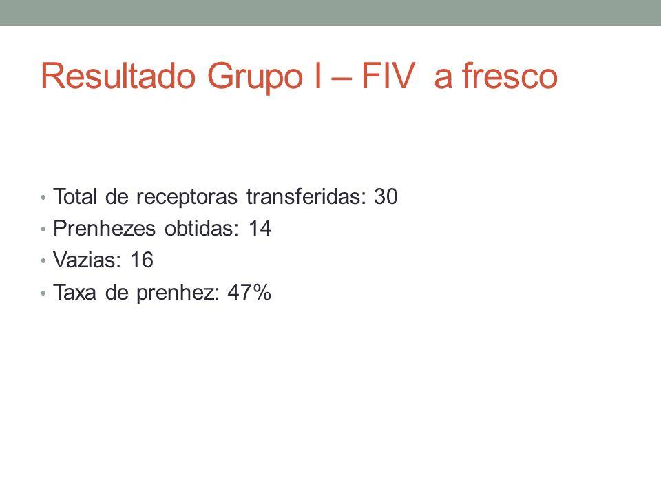 Resultado Grupo I – FIV a fresco Total de receptoras transferidas: 30 Prenhezes obtidas: 14 Vazias: 16 Taxa de prenhez: 47%