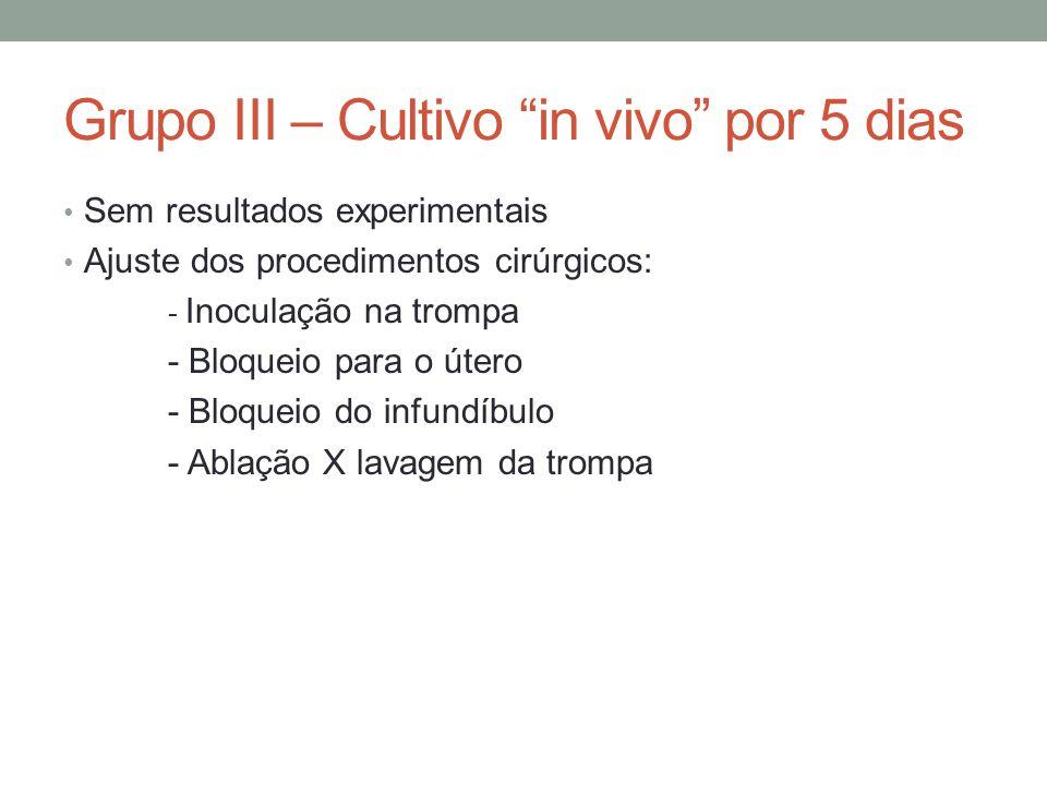 Grupo III – Cultivo in vivo por 5 dias Sem resultados experimentais Ajuste dos procedimentos cirúrgicos: - Inoculação na trompa - Bloqueio para o útero - Bloqueio do infundíbulo - Ablação X lavagem da trompa