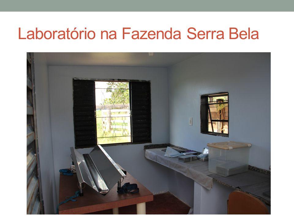 Laboratório na Fazenda Serra Bela