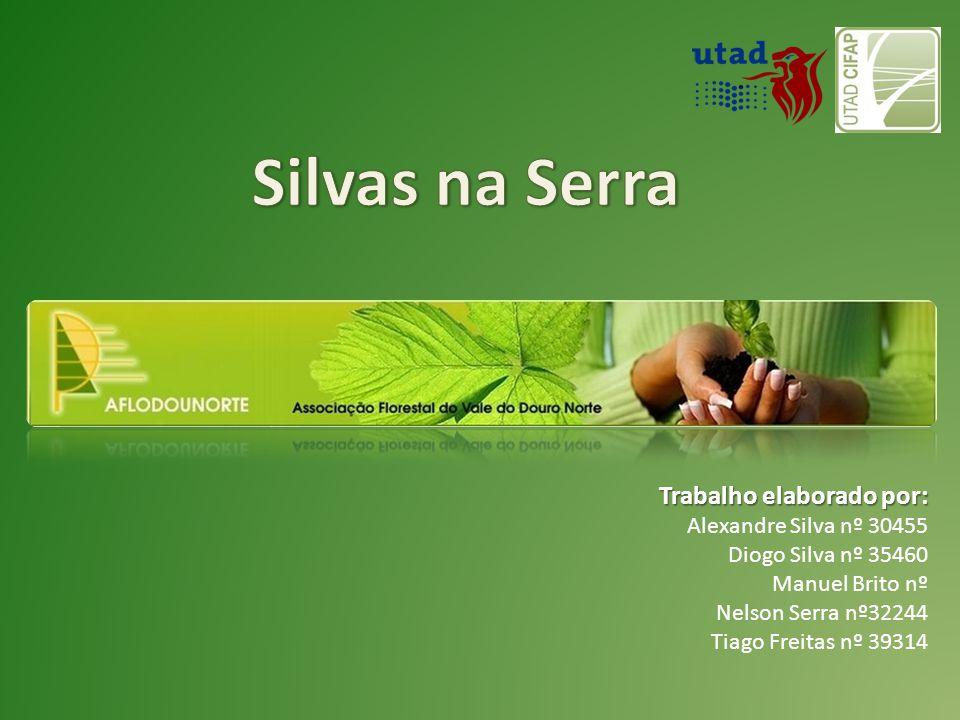 PROJECTOS Executados  Líder do Projecto AGRO Med.8 N.º388 Valorização da Resina sendo parceiros a Estação Florestal Nacional (EFN), Direcção Geral dos Recursos Florestais (DGRF), a Direcção Geral de Agricultura de Trás-os-Montes e Alto Douro, a empresa Socer (indústria de resina) e o Instituto Superior de Agronomia (ISA).