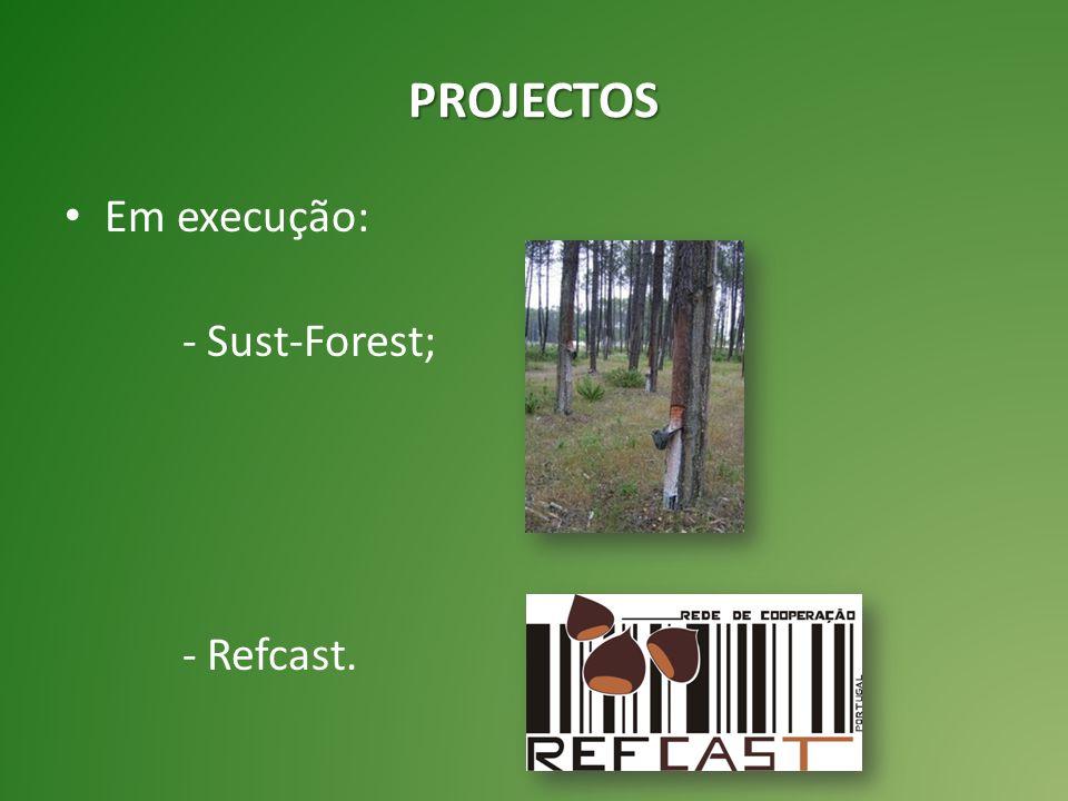 Em execução: - Sust-Forest; - Refcast. PROJECTOS