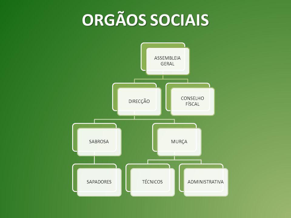 Foi esta associação que criou a 1º feira florestal a nível nacional, em 2001 no parque florestal de Murça.