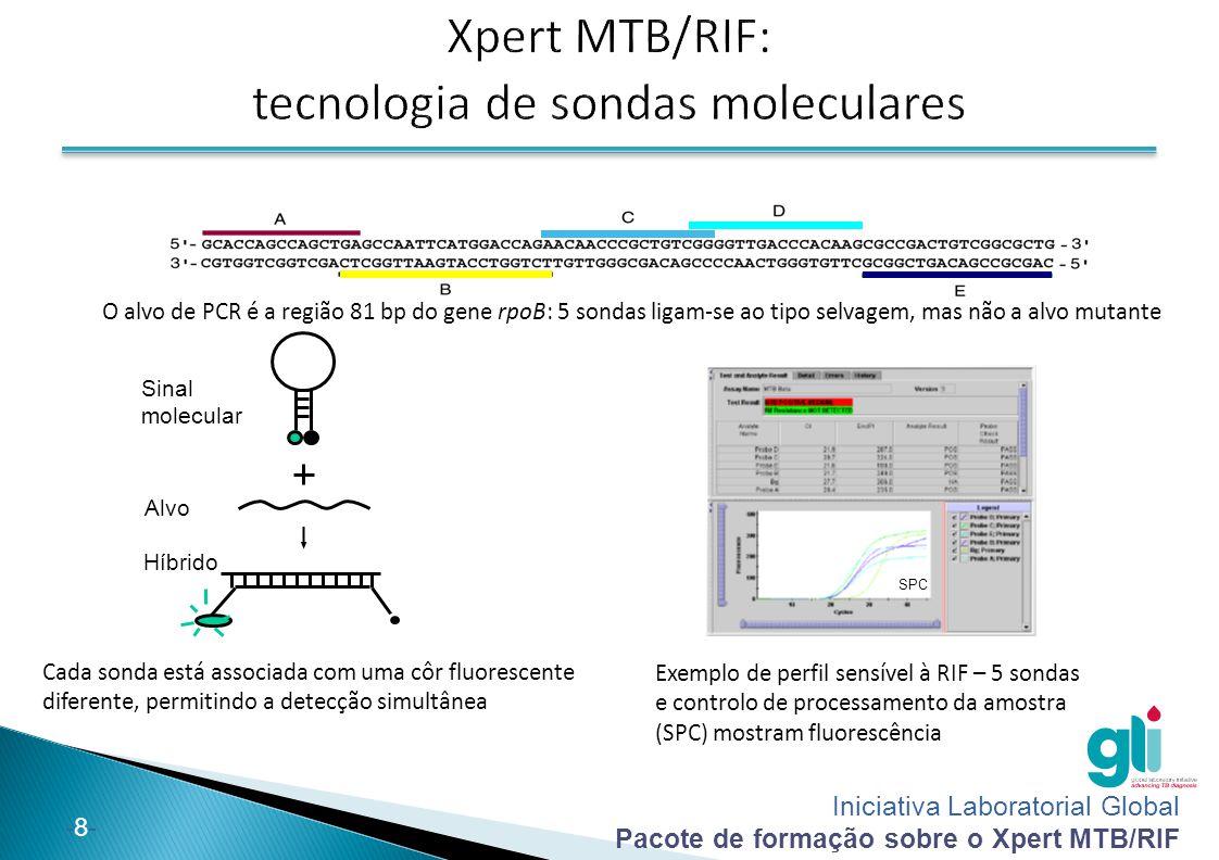 Iniciativa Laboratorial Global Pacote de formação sobre o Xpert MTB/RIF -8--8- Exemplo de perfil sensível à RIF – 5 sondas e controlo de processamento