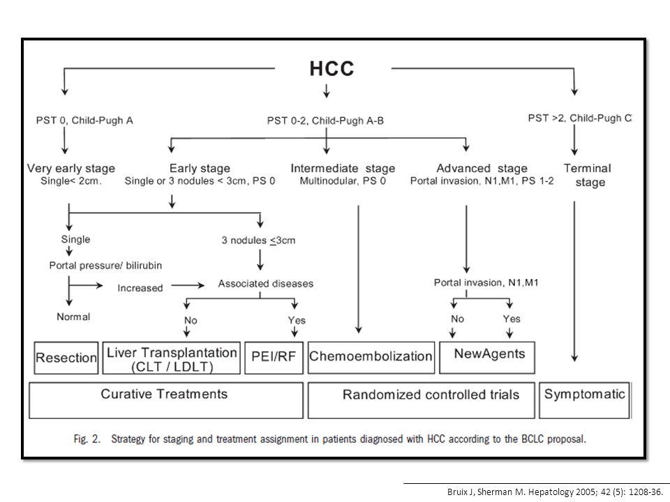 Bruix J, Sherman M. Hepatology 2005; 42 (5): 1208-36.