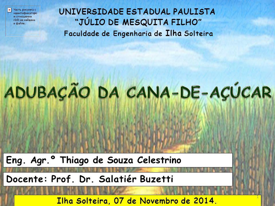 UNIVERSIDADE ESTADUAL PAULISTA JÚLIO DE MESQUITA FILHO Faculdade de Engenharia de Ilha Solteira Eng.