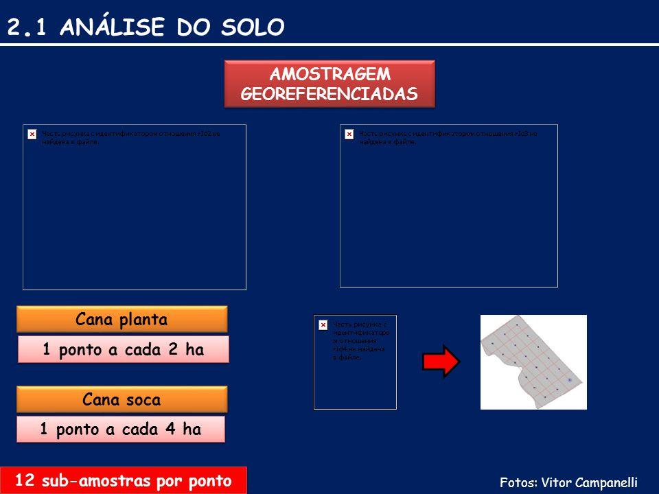 2. 1 ANÁLISE DO SOLO AMOSTRAGEM GEOREFERENCIADAS Cana planta Cana soca 1 ponto a cada 2 ha 1 ponto a cada 4 ha 12 sub-amostras por ponto Fotos: Vitor